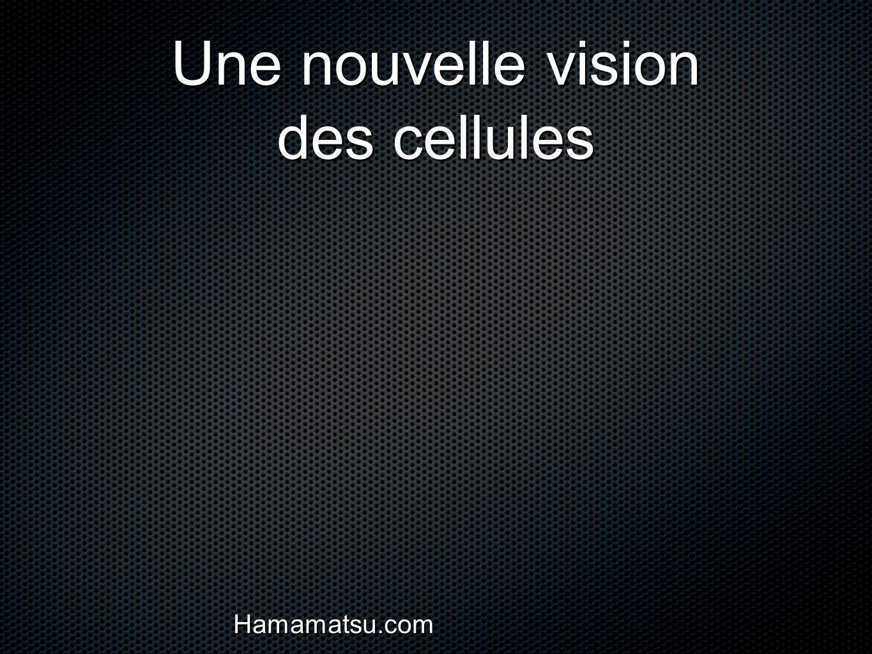 Une nouvelle vision des cellules Hamamatsu.com
