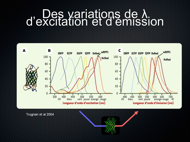 Des variations de λ dexcitation et démission Trugnan et al 2004