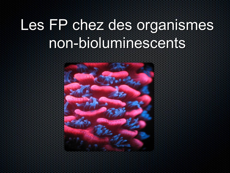 Les FP chez des organismes non-bioluminescents