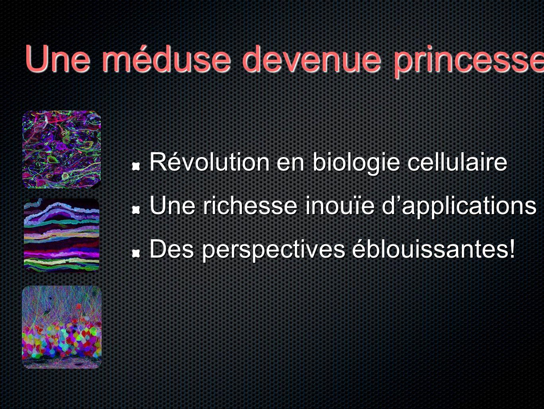 Une méduse devenue princesse Révolution en biologie cellulaire Une richesse inouïe dapplications Des perspectives éblouissantes!