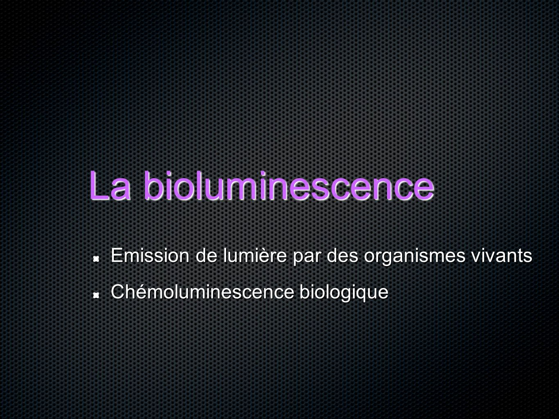 La bioluminescence Emission de lumière par des organismes vivants Chémoluminescence biologique