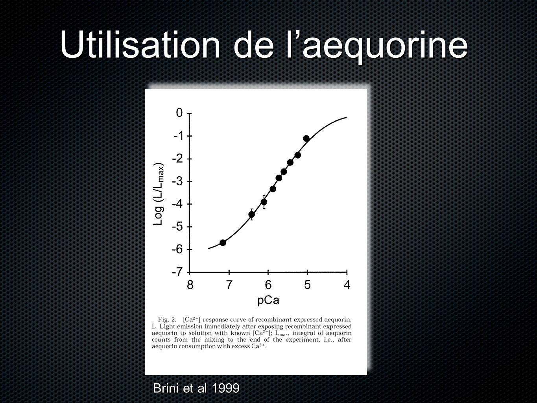 Utilisation de laequorine Brini et al 1999