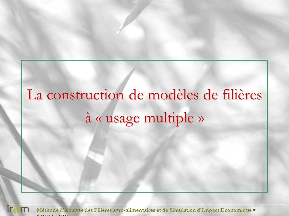 Méthode dAnalyse des Filières agro-alimentaires et de Simulation dImpact Economique METAφSIE Le contexte Une analyse de la compétitivité des filières dans lUEMOA Une évaluation de limpact des APE sur léconomie du Mali et du Niger Des appuis à des interprofessions du riz au Niger et Burkina Faso Des appuis à des Ministères pour la définition de systèmes de suivi (pilotage) des filières