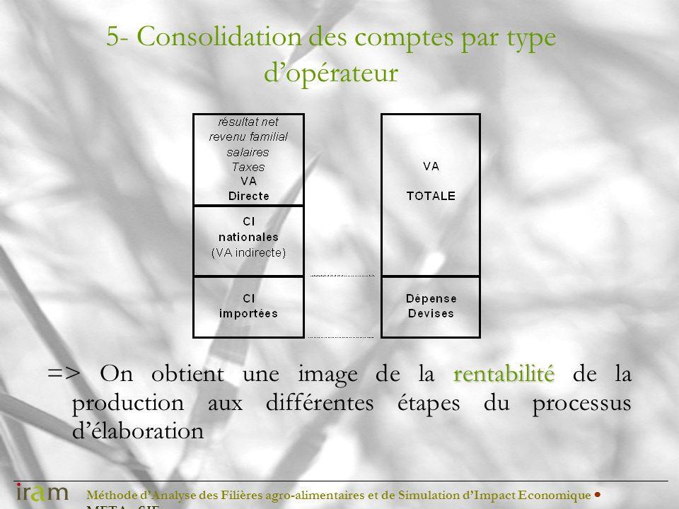 Méthode dAnalyse des Filières agro-alimentaires et de Simulation dImpact Economique METAφSIE 5- Consolidation des comptes par type dopérateur rentabil