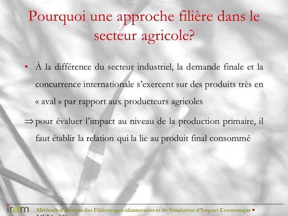 Méthode dAnalyse des Filières agro-alimentaires et de Simulation dImpact Economique METAφSIE Pourquoi une approche filière dans le secteur agricole? À