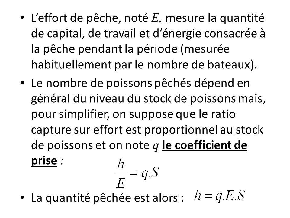 Leffort de pêche, noté E, mesure la quantité de capital, de travail et dénergie consacrée à la pêche pendant la période (mesurée habituellement par le