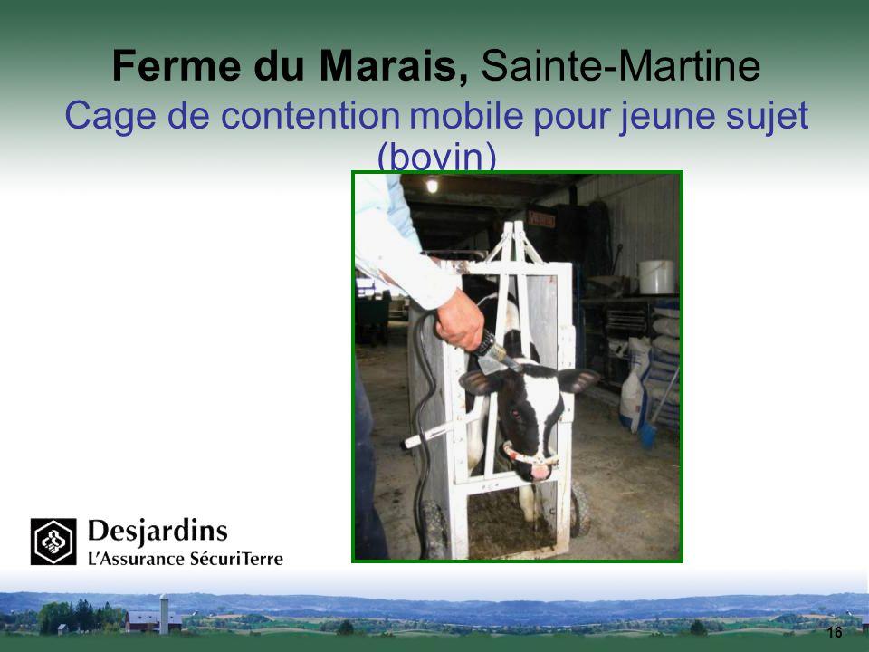 16 Ferme du Marais, Sainte-Martine Cage de contention mobile pour jeune sujet (bovin)