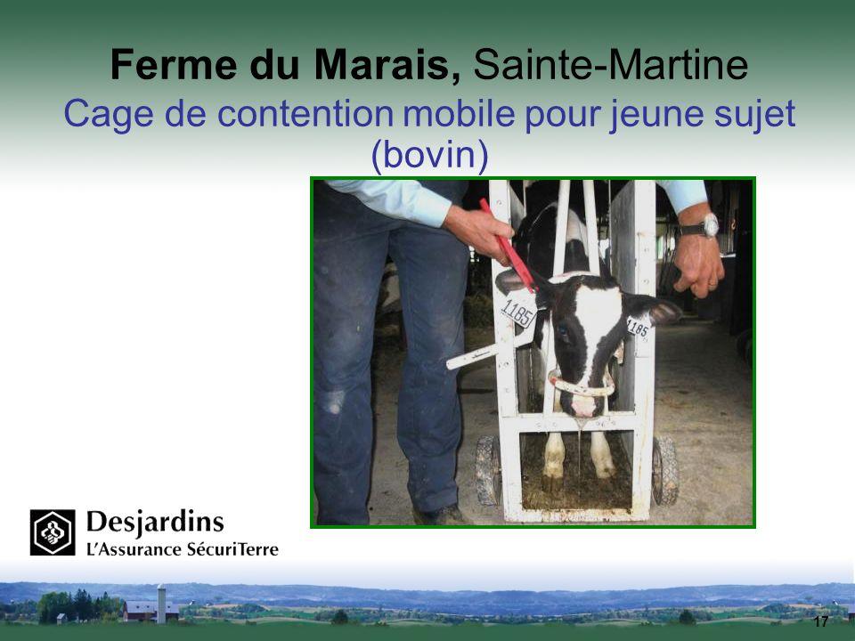 17 Ferme du Marais, Sainte-Martine Cage de contention mobile pour jeune sujet (bovin)
