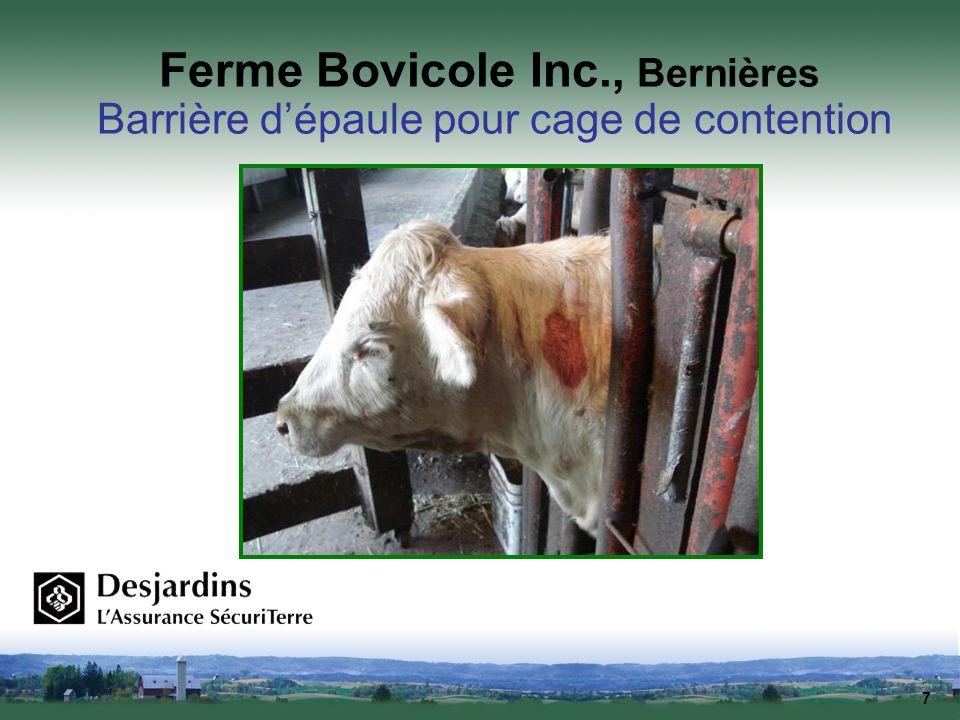 7 Ferme Bovicole Inc., Bernières Barrière dépaule pour cage de contention