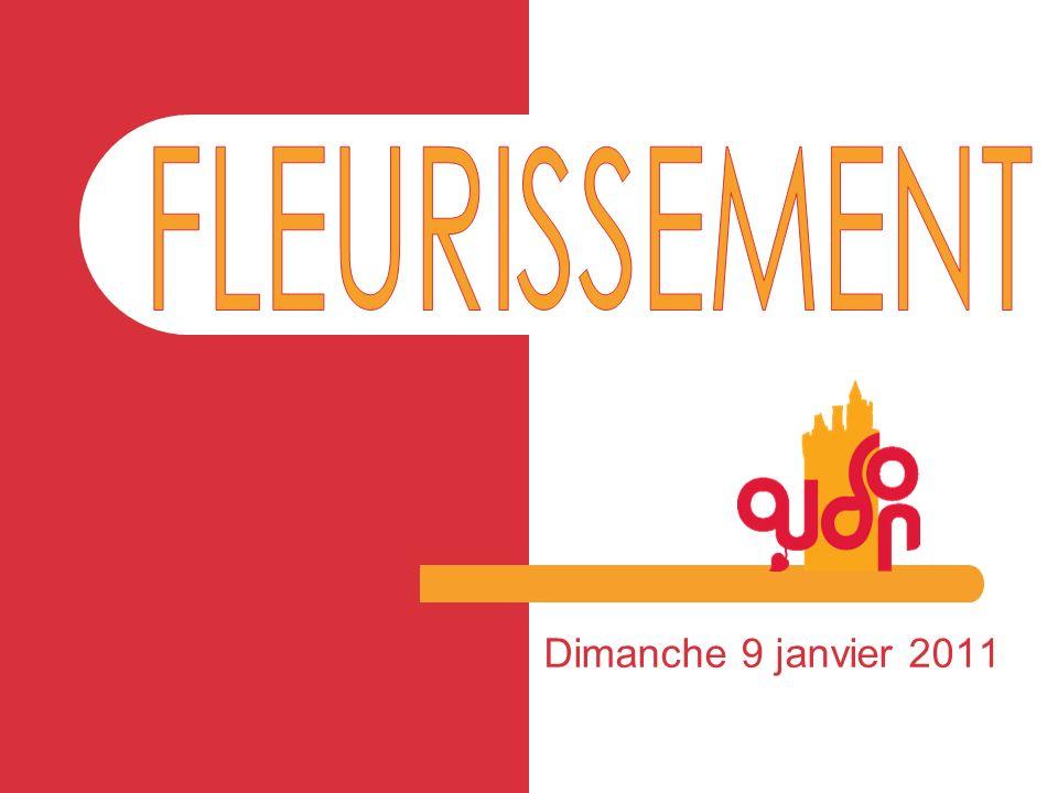 Catégorie PARC ET JARDIN Concours des maisons fleuries et de lamélioration du cadre de vie