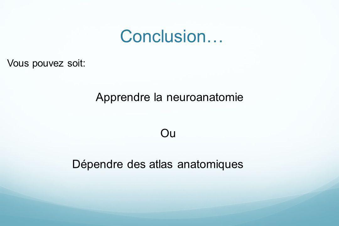 Conclusion… Apprendre la neuroanatomie Ou Dépendre des atlas anatomiques Vous pouvez soit: