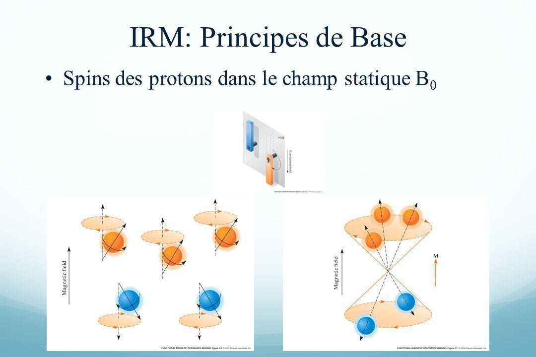 Spins des protons dans le champ statique B 0 IRM: Principes de Base