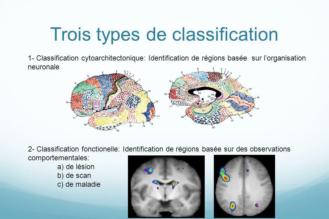 Trois types de classification 2- Classification fonctionelle: Identification de régions basée sur des observations comportementales: a) de lésion b) d