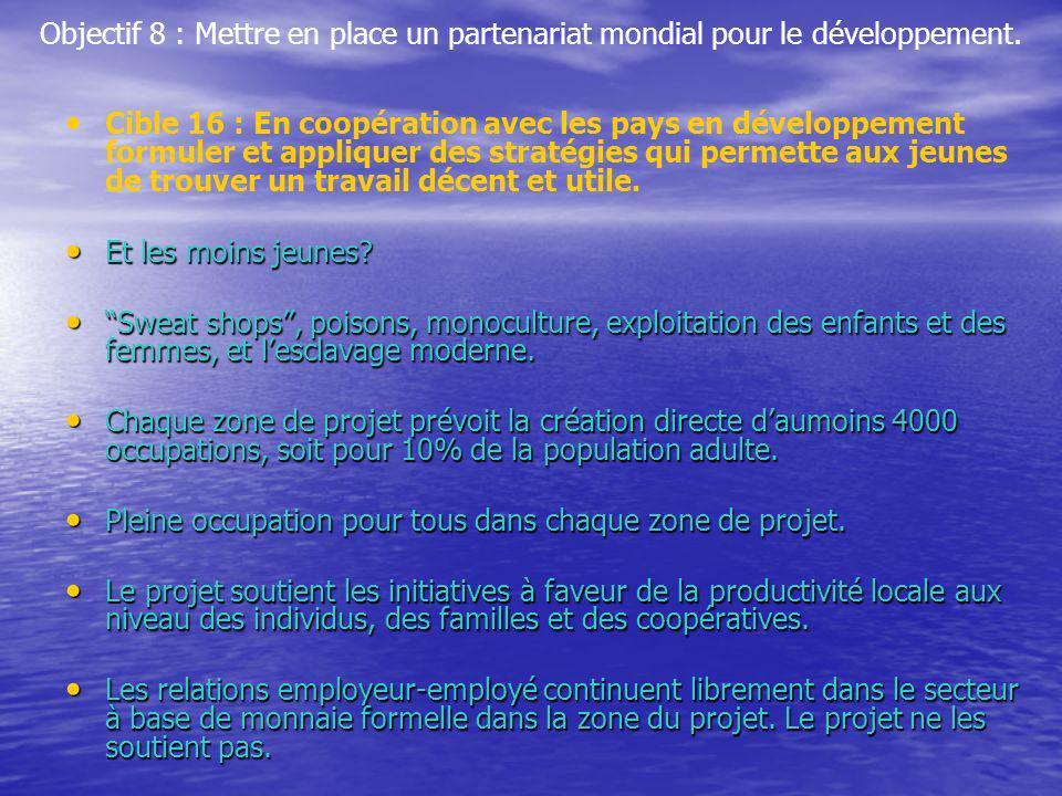 Objectif 8 : Mettre en place un partenariat mondial pour le développement. Cible 16 : En coopération avec les pays en développement formuler et appliq
