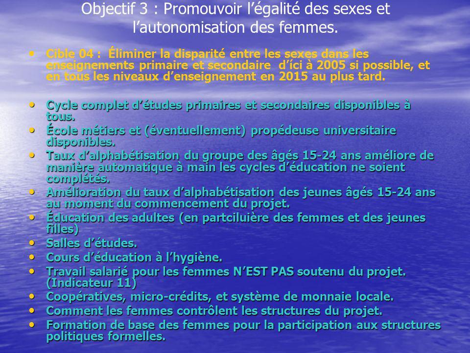 Objectif 3 : Promouvoir légalité des sexes et lautonomisation des femmes. Cible 04 : Éliminer la disparité entre les sexes dans les enseignements prim