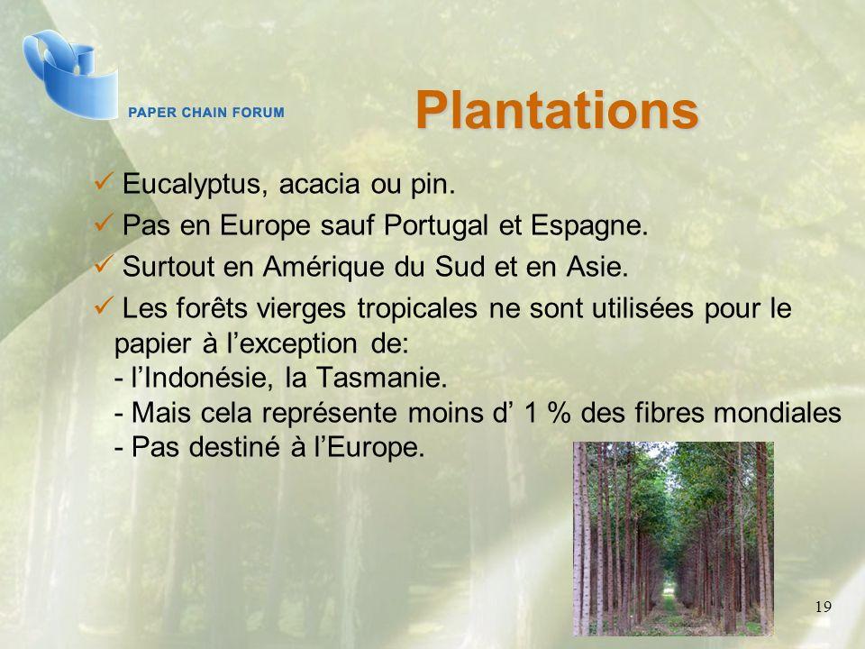 19 Eucalyptus, acacia ou pin. Pas en Europe sauf Portugal et Espagne. Surtout en Amérique du Sud et en Asie. Les forêts vierges tropicales ne sont uti