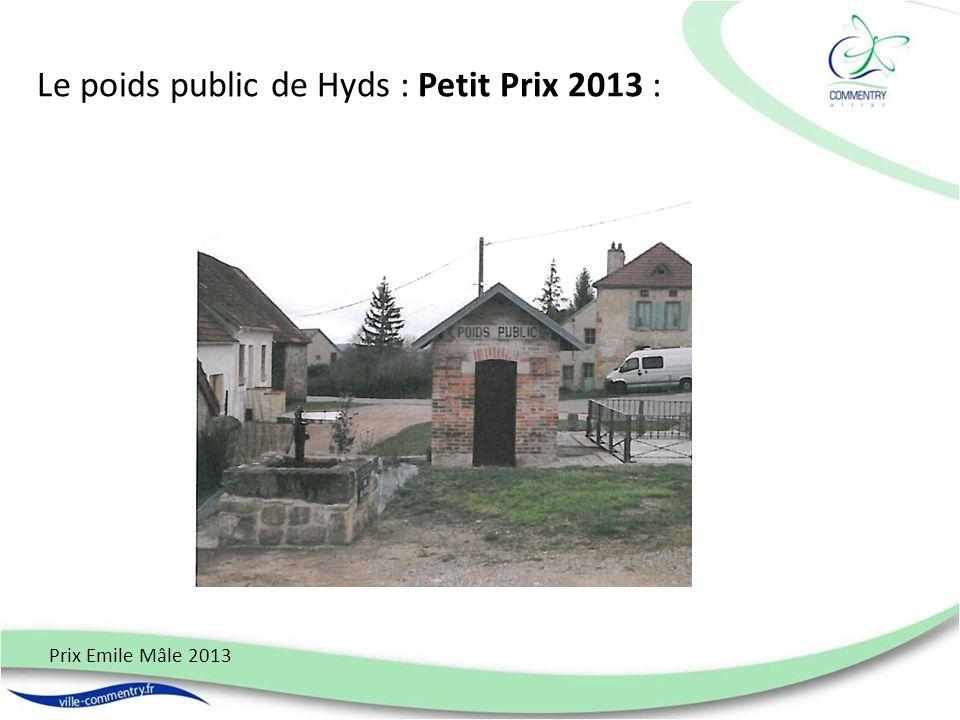 Le poids public de Hyds : Petit Prix 2013 : Prix Emile Mâle 2013