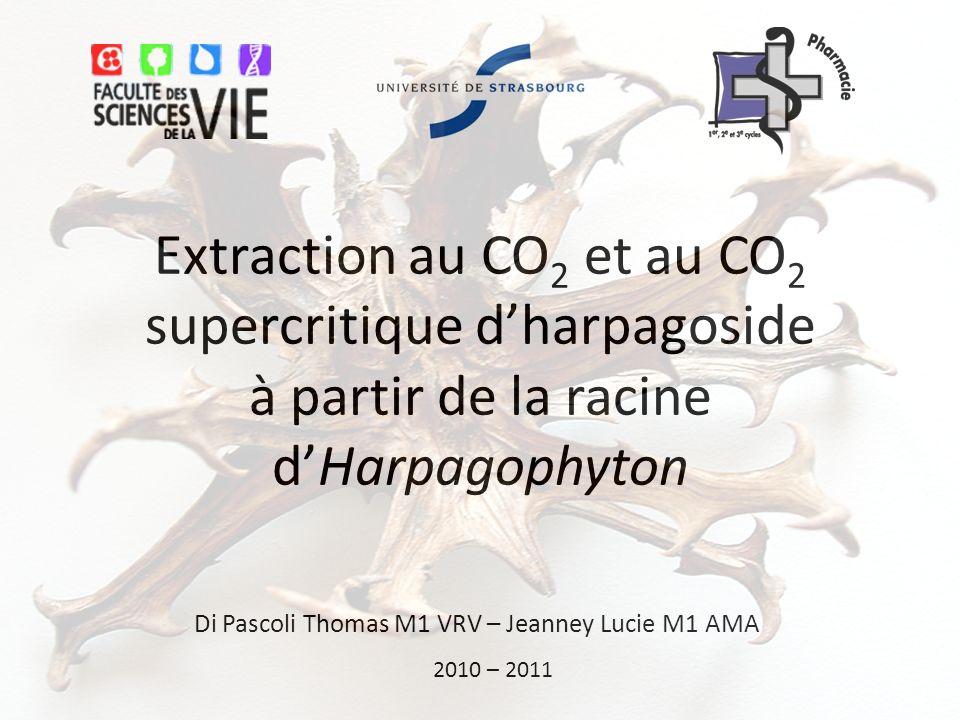 Extraction au CO 2 et au CO 2 supercritique dharpagoside à partir de la racine dHarpagophyton Di Pascoli Thomas M1 VRV – Jeanney Lucie M1 AMA 2010 – 2011