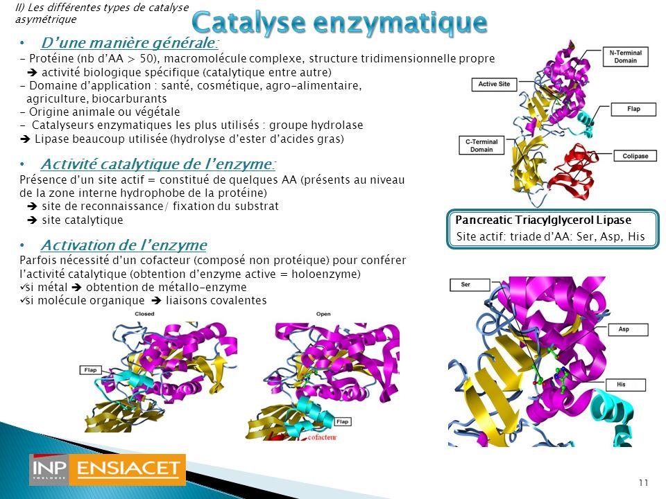 Dune manière générale: - Protéine (nb dAA > 50), macromolécule complexe, structure tridimensionnelle propre activité biologique spécifique (catalytiqu