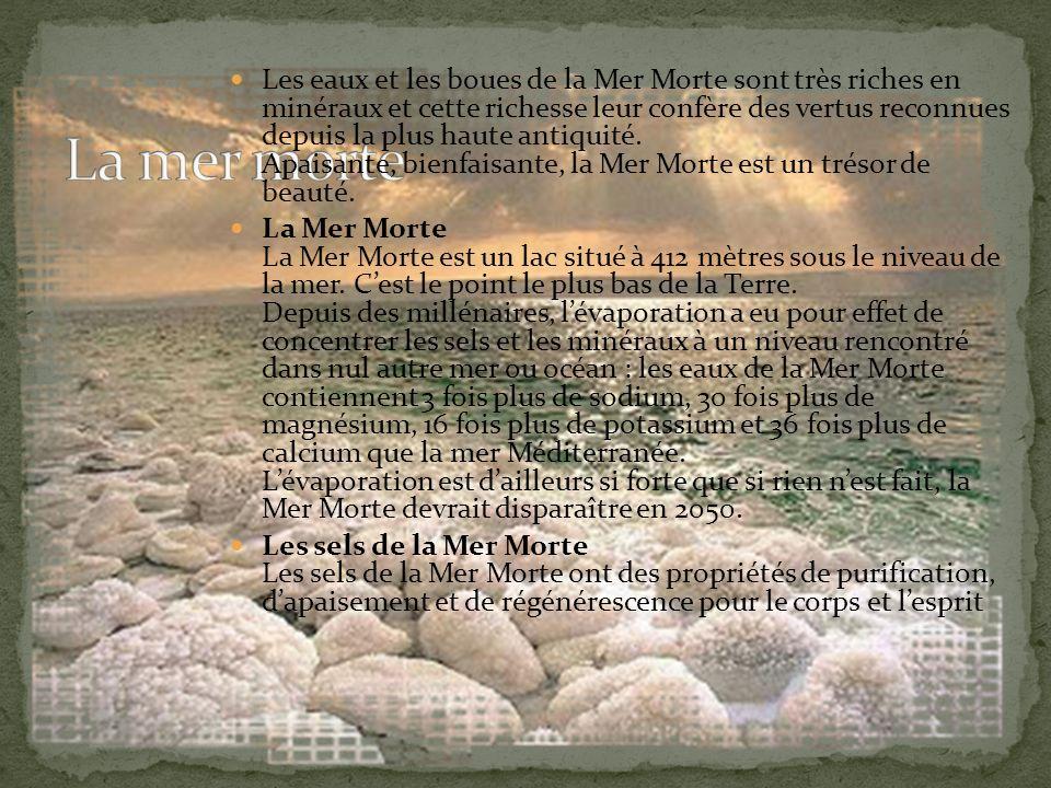 Les eaux et les boues de la Mer Morte sont très riches en minéraux et cette richesse leur confère des vertus reconnues depuis la plus haute antiquité.