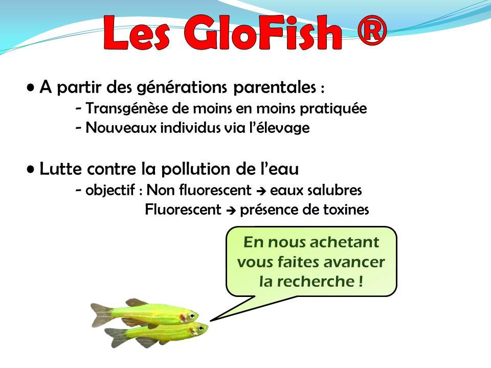 A partir des générations parentales : - Transgénèse de moins en moins pratiquée - Nouveaux individus via lélevage Lutte contre la pollution de leau -