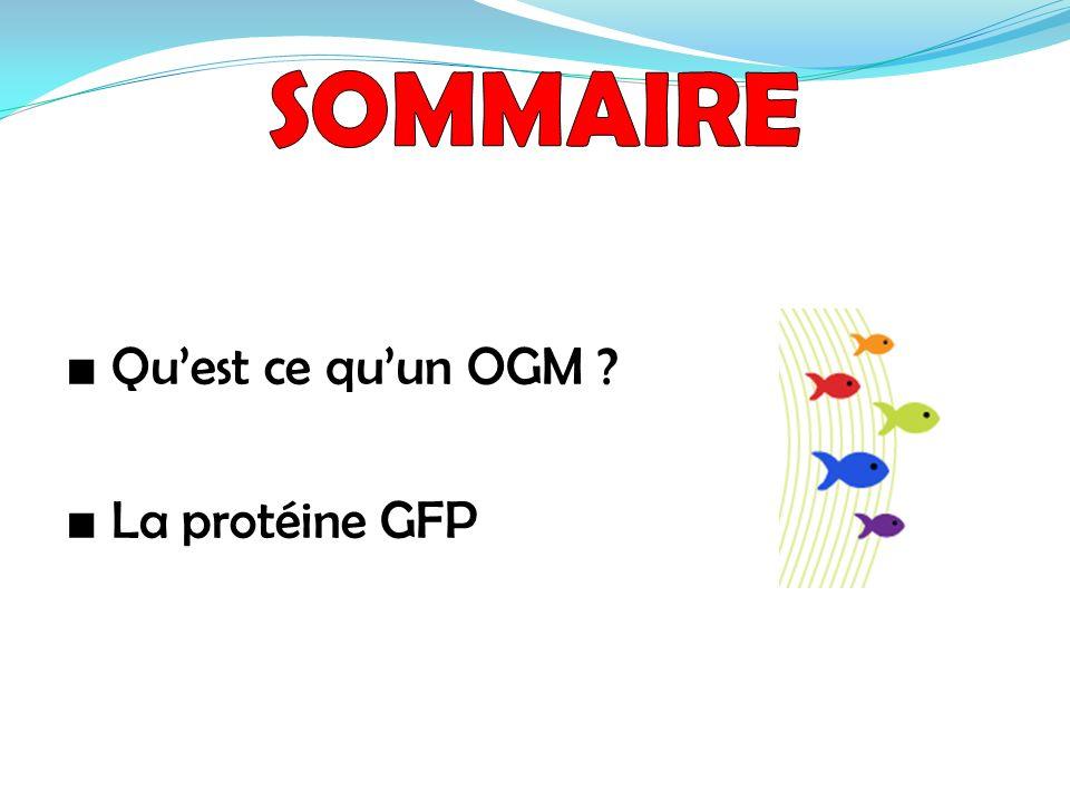 Quest ce quun OGM ? La protéine GFP