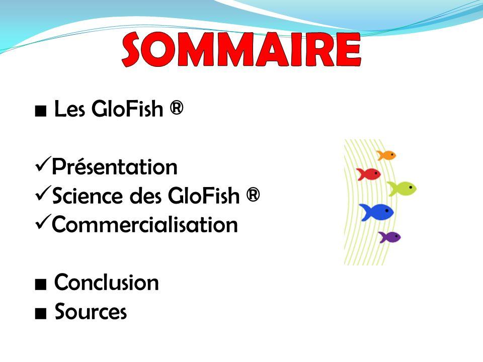 Les GloFish ® Présentation Science des GloFish ® Commercialisation Conclusion Sources