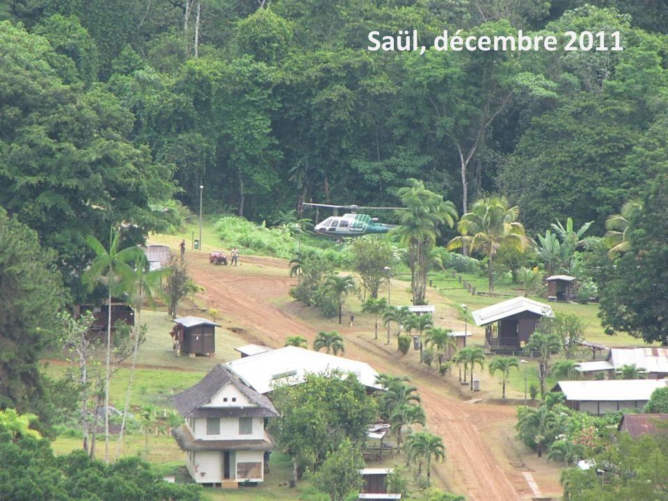 Stage Géo de la Guyane - 2013 Saül, décembre 2011