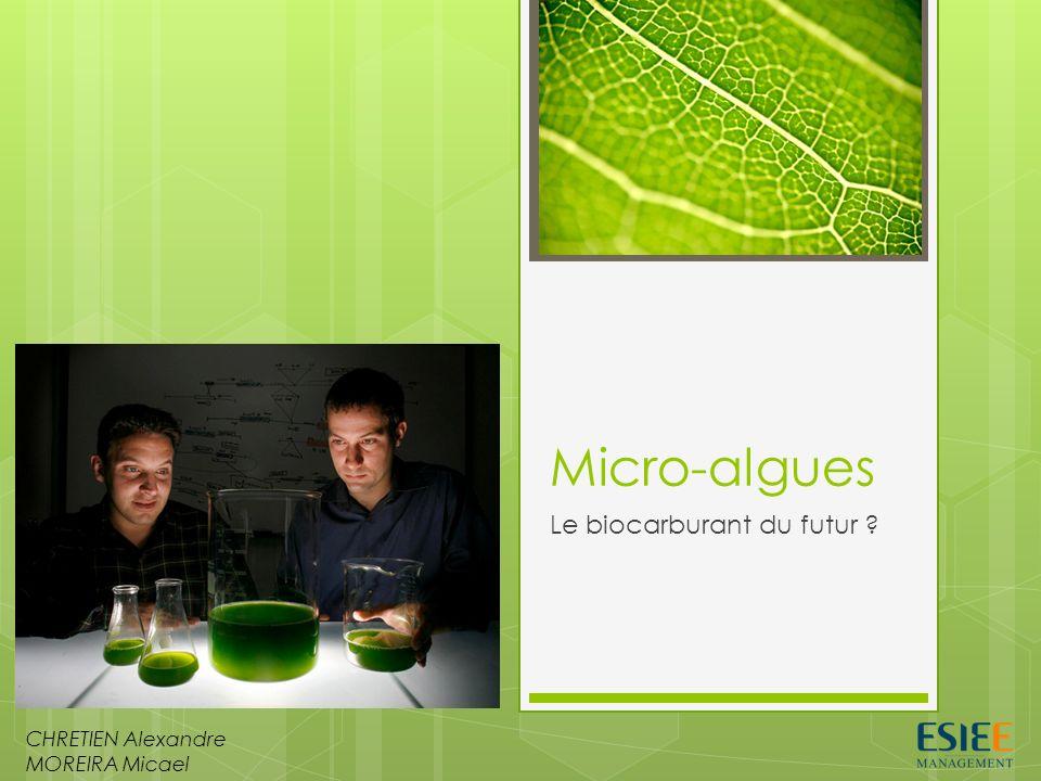 Micro-algues Le biocarburant du futur ? CHRETIEN Alexandre MOREIRA Micael
