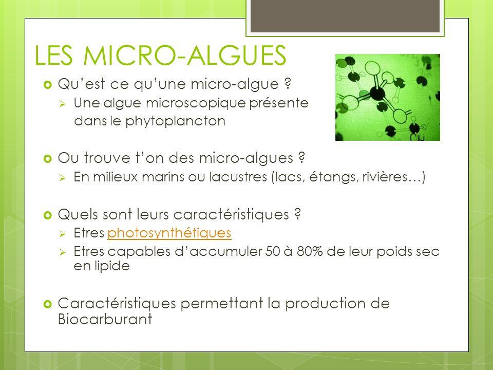 LES MICRO-ALGUES Quest ce quune micro-algue ? Une algue microscopique présente dans le phytoplancton Ou trouve ton des micro-algues ? En milieux marin