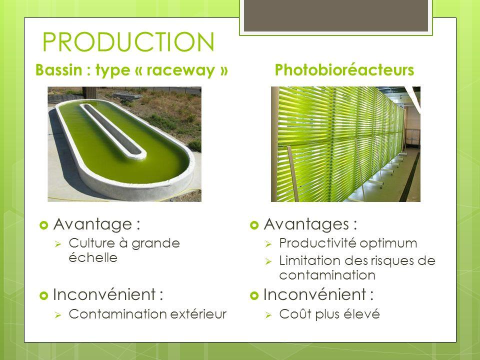 PRODUCTION Choix de lemplacement des cultures Besoins des algues : Soleil, Eau et CO2 Sites propices : bassin dépuration, usines industriel Exemple au Etats-Unis et principe de fonctionnement :