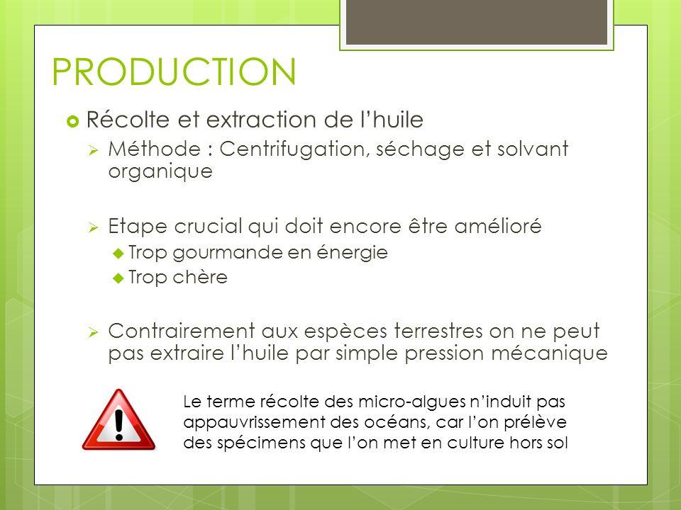 PRODUCTION Récolte et extraction de lhuile Méthode : Centrifugation, séchage et solvant organique Etape crucial qui doit encore être amélioré Trop gou