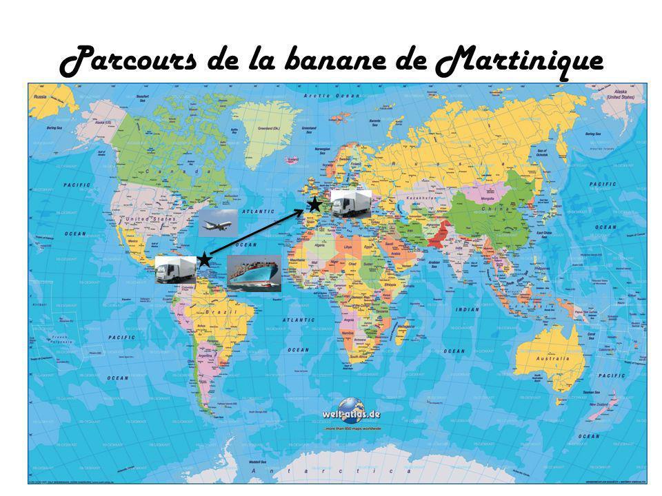 Parcours de la banane de Martinique
