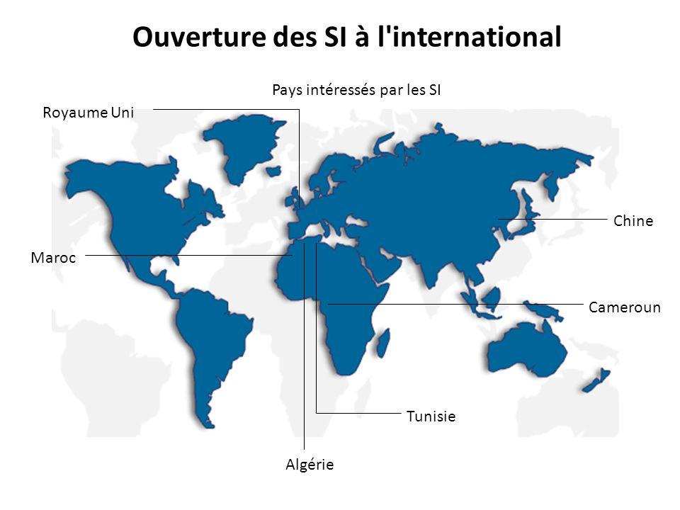 Ouverture des SI à l international Pays intéressés par les SI Maroc Chine Cameroun Algérie Tunisie Royaume Uni