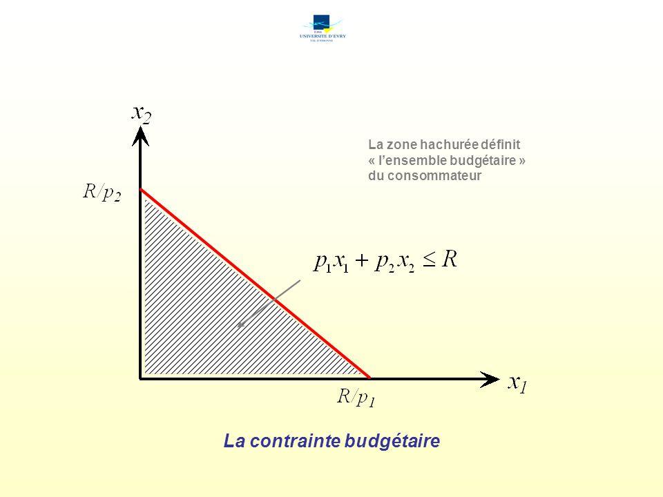 La zone hachurée définit « lensemble budgétaire » du consommateur