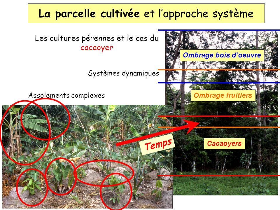 La parcelle cultivée et lapproche système Les cultures pérennes et le cas du cacaoyer Systèmes dynamiques Assolements complexes Cacaoyers Ombrage frui