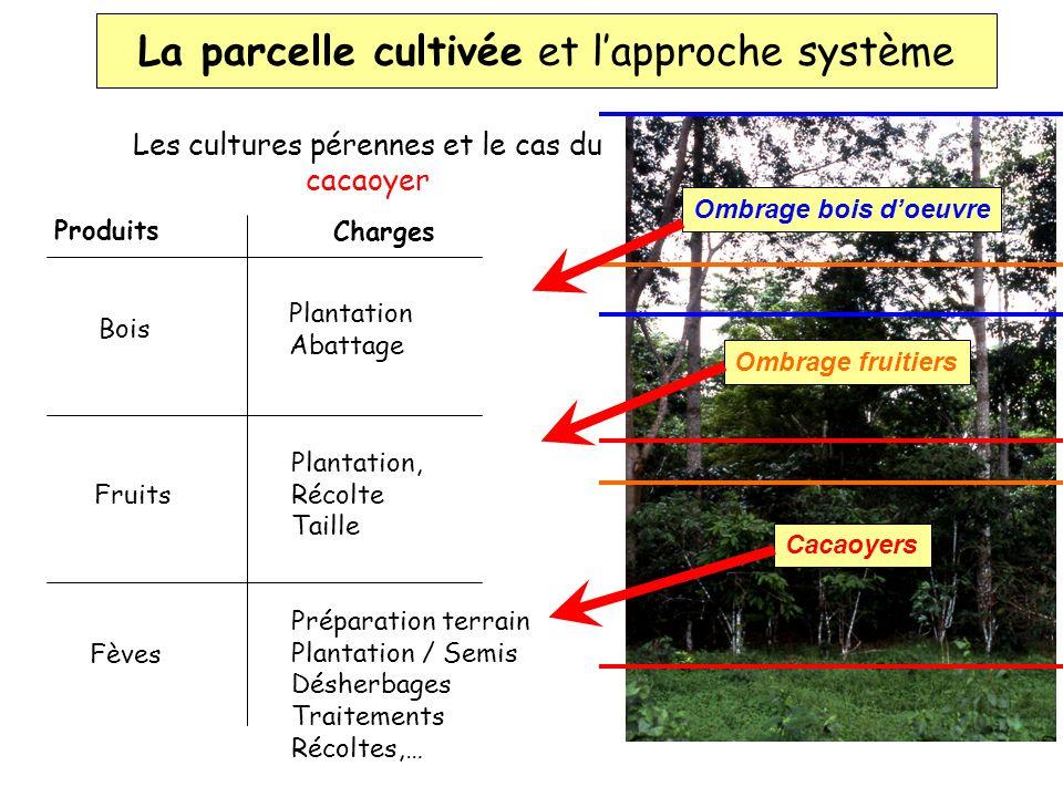 Le SYSTEME DE CULTURE, où : - un ensemble de variétés donné, - dans un lieu donné, - pour une succession de travaux (itinéraire technique) donnée.
