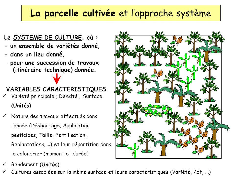 Le SYSTEME DE CULTURE, où : - un ensemble de variétés donné, - dans un lieu donné, - pour une succession de travaux (itinéraire technique) donnée. Var