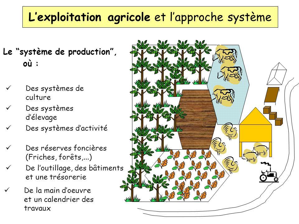 Les systèmes de production des agriculteurs Définitions des variables (Base dinformations) Toutes les unités et taxes Systèmes de culture et délevage Exploitation agricole