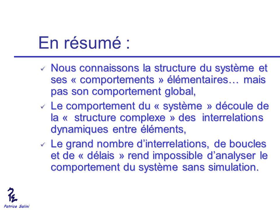 Patrice Salini En résumé : Nous connaissons la structure du système et ses « comportements » élémentaires… mais pas son comportement global, Nous conn