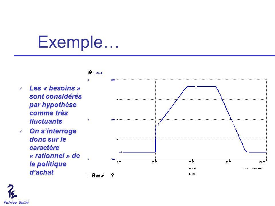 Patrice Salini Exemple… Les « besoins » sont considérés par hypothèse comme très fluctuants Les « besoins » sont considérés par hypothèse comme très f