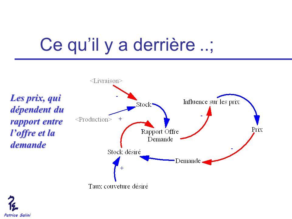 Patrice Salini Ce quil y a derrière..; Les prix, qui dépendent du rapport entre loffre et la demande