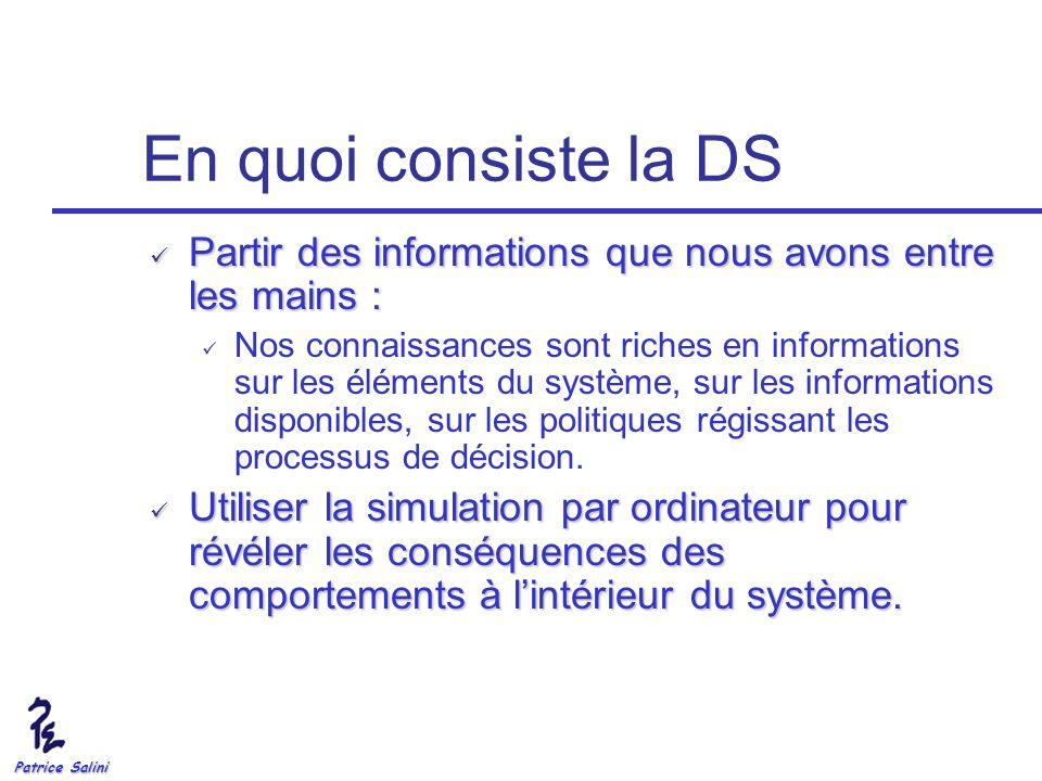 Patrice Salini En quoi consiste la DS Partir des informations que nous avons entre les mains : Partir des informations que nous avons entre les mains