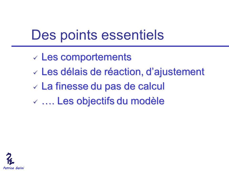 Patrice Salini Des points essentiels Les comportements Les comportements Les délais de réaction, dajustement Les délais de réaction, dajustement La fi