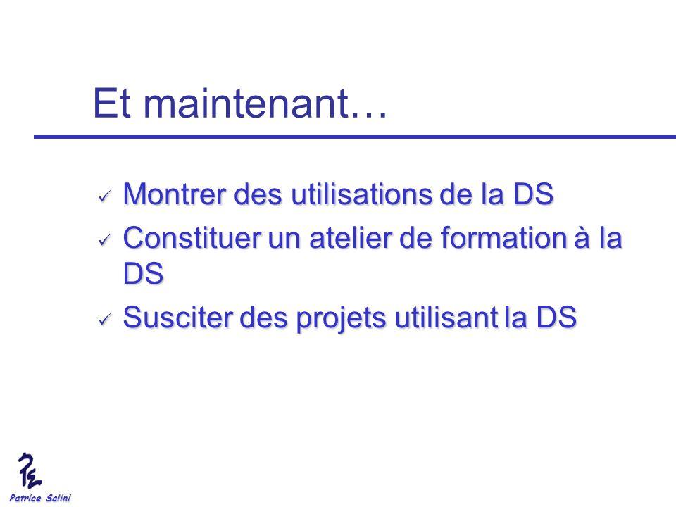 Patrice Salini Et maintenant… Montrer des utilisations de la DS Montrer des utilisations de la DS Constituer un atelier de formation à la DS Constitue