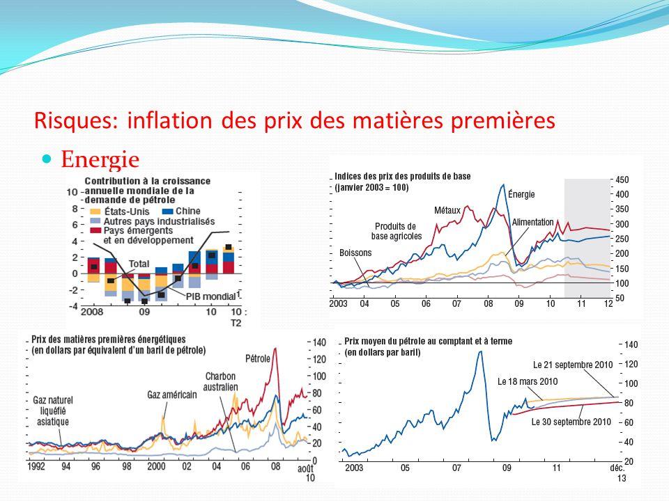 Risques: inflation des prix des matières premières Energie