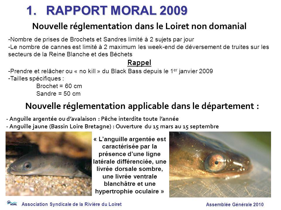 Association Syndicale de la Rivière du Loiret Assemblée Générale 2010 Nouvelle réglementation applicable dans le département : - Anguille argentée ou