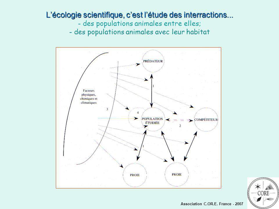 Association C.OR.E.France - 2007 Lécologie scientifique, cest létude des interractions...