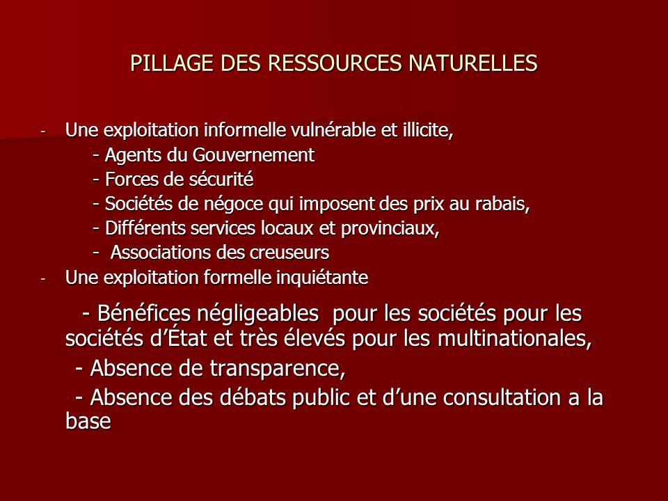 PILLAGE DES RESSOURCES NATURELLES - Une exploitation informelle vulnérable et illicite, - Agents du Gouvernement - Agents du Gouvernement - Forces de