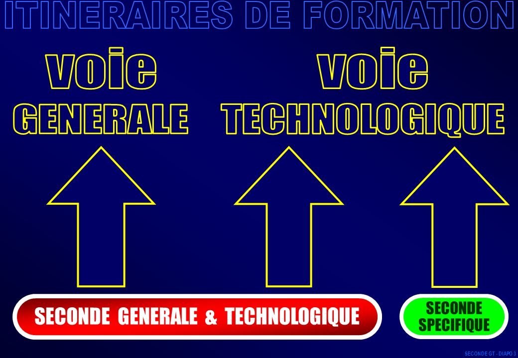 Langue vivante 2 (L.V.2) Langue vivante 3 (L.V.3) Arts (Arts plastiques, Musique, Théâtre, Cinéma, Danse, Histoire des arts, Arts du cirque) Sciences économiques et sociales (S.E.S.) Informatique de gestion et de communication (I.G.C.) Initiation aux sciences de lingénieur (I.S.I.) Informatique et systèmes de production (I.S.P.) Mesures physiques et informatiques (M.P.I.) Physique et chimie de laboratoire (P.C.L.) Biologie de laboratoire et paramédicale (B.L.P.) Sciences médico-sociales (S.M.S.) Éducation physique et sportive (E.P.S.) Écologie - agronomie - territoire - citoyenneté (E.A.T.C.) Création design (CrD) Culture design (CuD) à choisir parmi 17 Latin Grec SECONDE GT - DIAPO 14